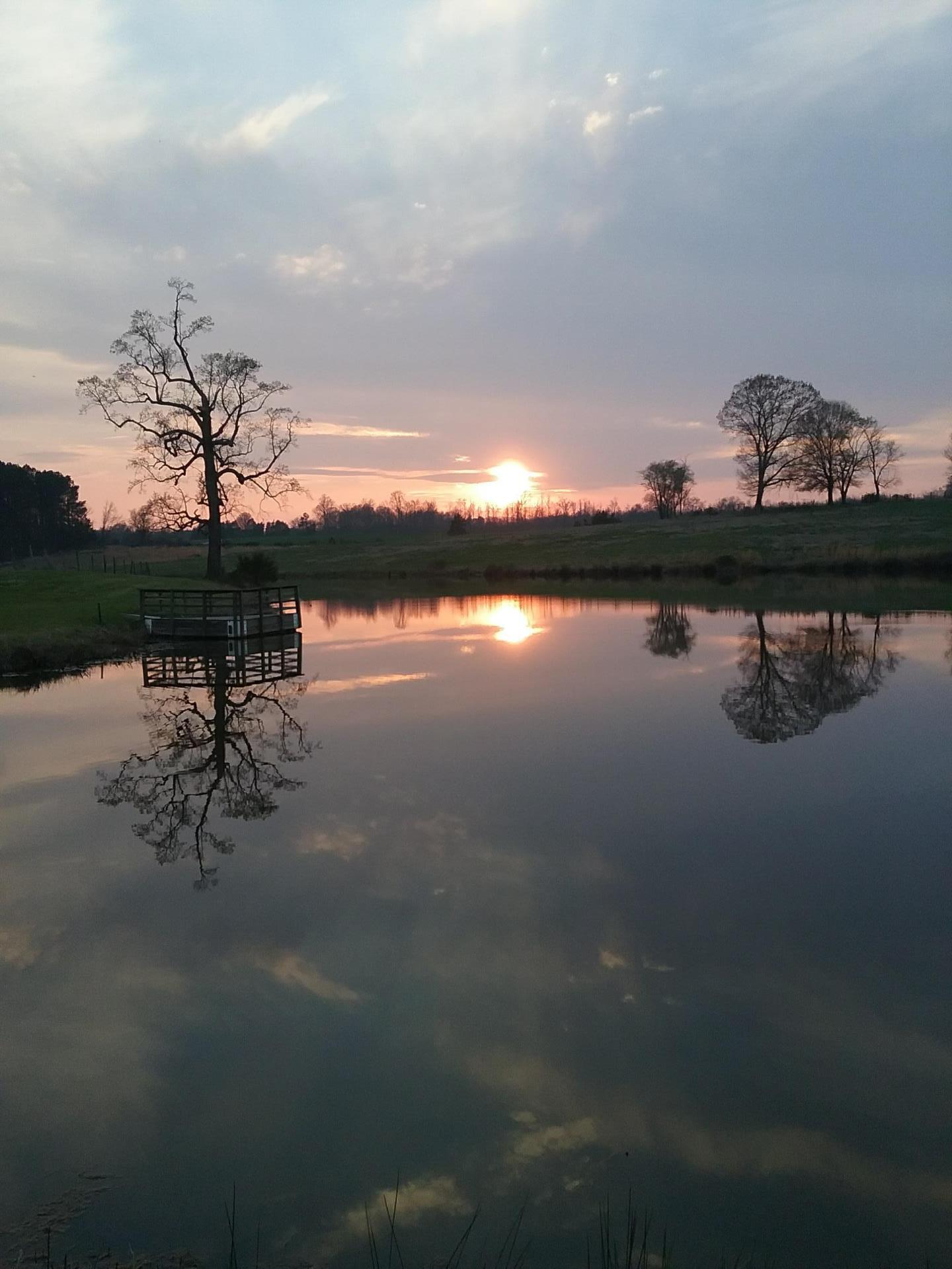 Pond-Sunset