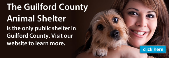 Animal Services | Guilford County, NC