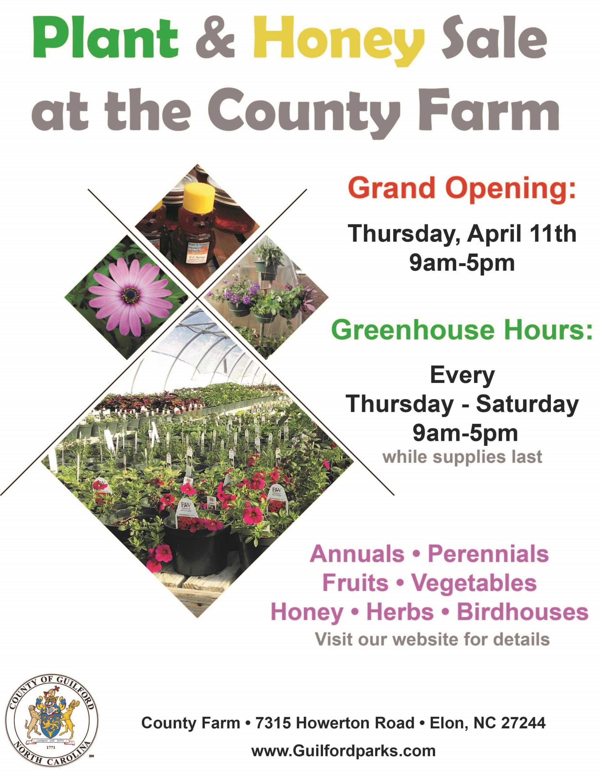 Plant and Honey Sale 2019