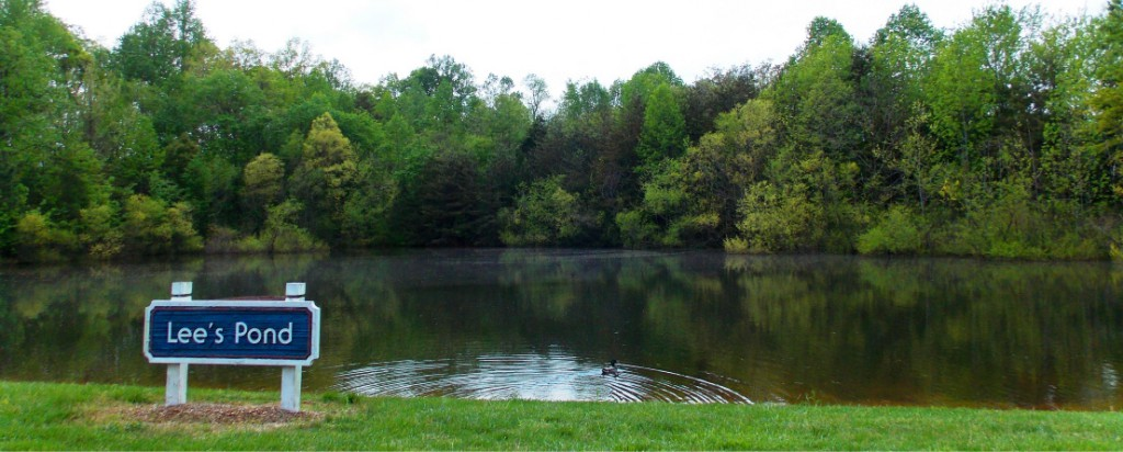 Photo of Lee's Pond