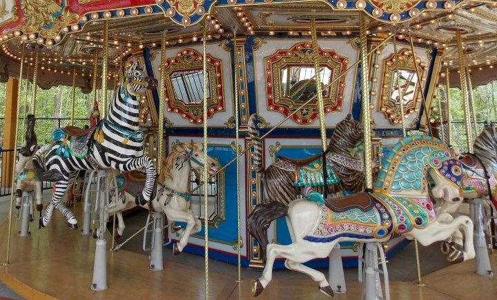 Photo of carousel